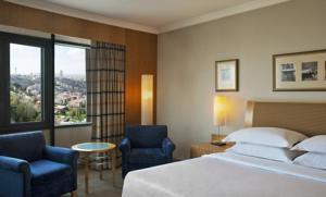 Sheraton Ankara Hotel & Convention Center 6