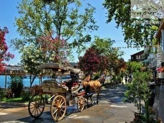 Daily Princes' Island Tour from Istanbul Buyukada