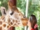 Daily Sapanca Lake Masukiye & Zoo 1