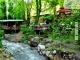 Daily Sapanca Lake Masukiye & Zoo 4