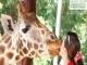 Daily Sapanca Lake Masukiye & Zoo 6