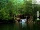 Daily Sapanca Lake Masukiye & Zoo 8